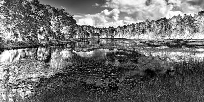 Rendition Photograph - Fly Pond - Black And White Rendition by David Patterson
