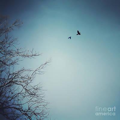Photograph - Flyaway by Kerri Farley