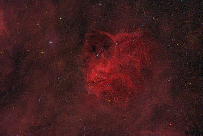 Photograph - Flyihng Owl Nebula by Brian Peterson