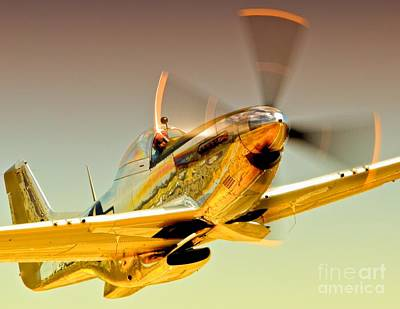 Planes Of Fame Photograph - Flyin Golden Boeing North American P-51d Mustang And Brant Seghetti   by Gus McCrea