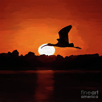 Flying Bird And Sunset  Original by Gull G