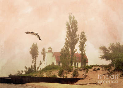 Photograph - Flying By Point Betsie Lighthouse by Lydia Holly