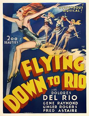 Dolores Mixed Media - Flying Down To Rio  by Mountain Dreams