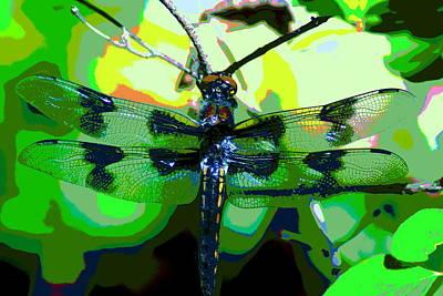Photograph - Flying Dragon by Ben Upham III