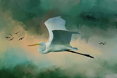 Photograph - Flying Egret by Ericamaxine Price