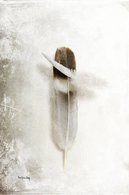 Photograph - Flying Feathers by Randi Grace Nilsberg