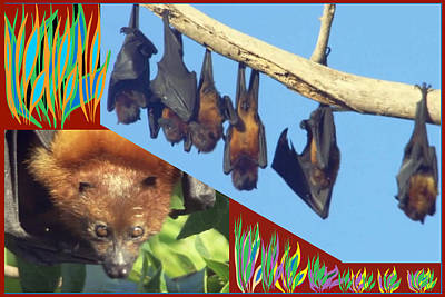 Mixed Media - Flying Fox Giant Bats Of The Zanzibar Island Coral Reef Habitat by Navin Joshi