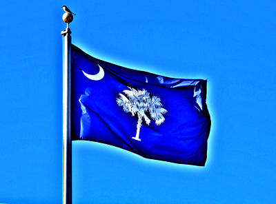 Colored Pencils - SC Flying High In The Carolina Blue Sky by Joey OConnor Photography