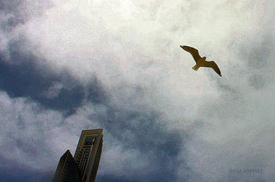 Photograph - Flying High by Susan Vineyard