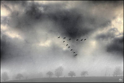 Photograph - Flying Into A Gathering Storm by Wayne King