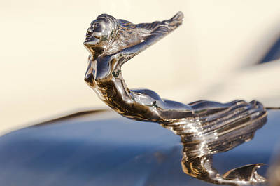 Flying Lady Hood Ornament Art Print by Jill Reger