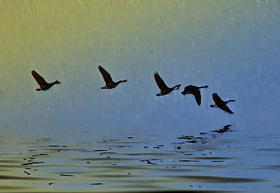Flying Low Art Print by Bill Cannon
