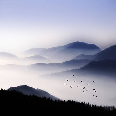 Flying Over The Fog Art Print by Philippe Sainte-Laudy