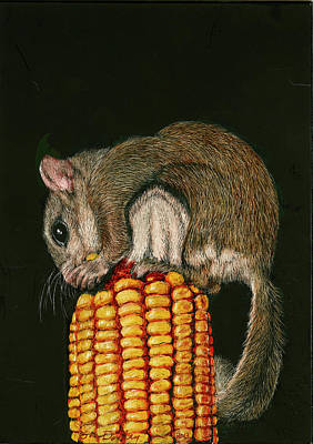 Painting - Flying Squirrel's Midnight Snack by Susan Donley