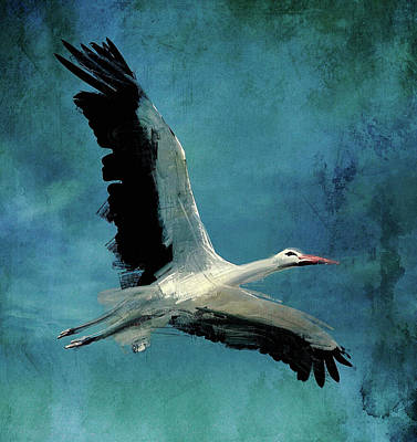 Stork Digital Art - Flying Stork by Yury Malkov