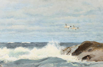 Waterfowl Painting - Flying Waterfowl Over Rocks by Bruno Liljefors