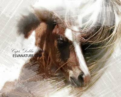Photograph - Foal Art 0337 by Captain Debbie Ritter