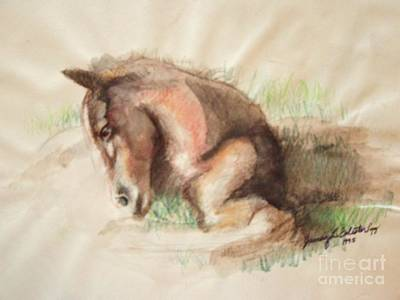 Foal Art Print by Jamey Balester