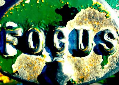 Meaningful Art Photograph - Focus Two by Sara Young