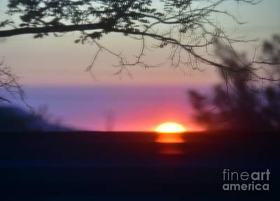 Photograph -  Focusing On A New Day by Angela J Wright