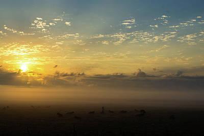 Photograph - Fog 4 by Shannon Harrington