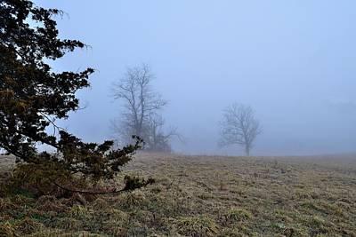 Paul Mccartney - Fog 81 by Lawrence Hess