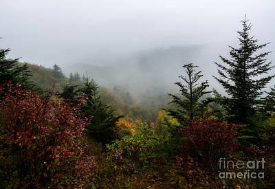 Photograph - Fog And Drizzle. by Itai Minovitz