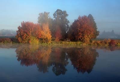 Photograph - Fog And Fall by Lynn Hopwood