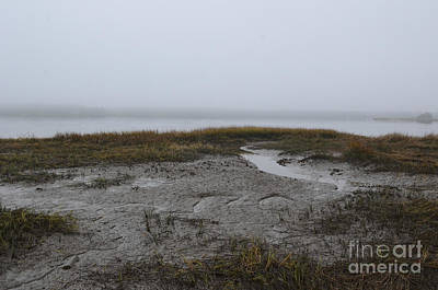Photograph - Fog And Low Tide Over The Wando River by Dale Powell
