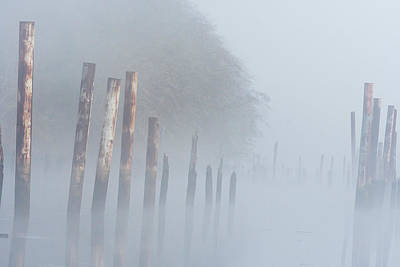 Photograph - Fog And Pilings by Robert Potts