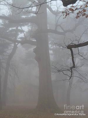 Photograph - Fog by Anna Folkartanna Maciejewska-Dyba