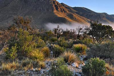 Fog At Sunrise - Guadalupe Mountains Art Print