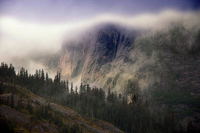 Photograph - Fog Bank by Harry Spitz