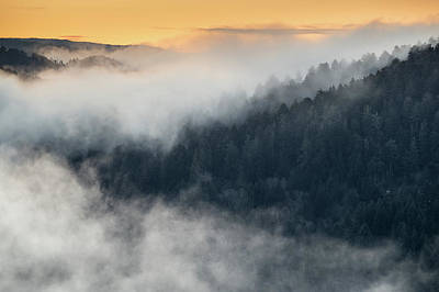 Photograph - Fog Enveloped Hills At Sunrise by Greg Nyquist
