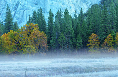 Photograph - Fog-frost-fall by Jonathan Nguyen