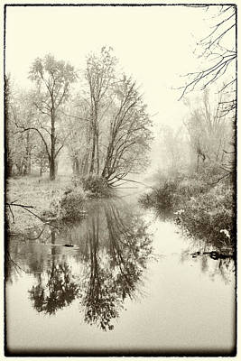 Photograph - Fog by Gej Jones