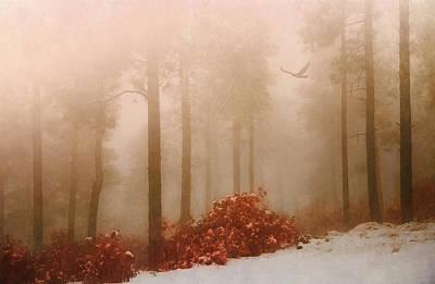 Photograph - Fog IIi by Elena E Giorgi