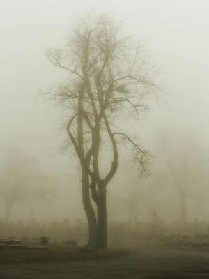Graveyard Road Photograph - Fog In A Graveyard by Gothicrow Images