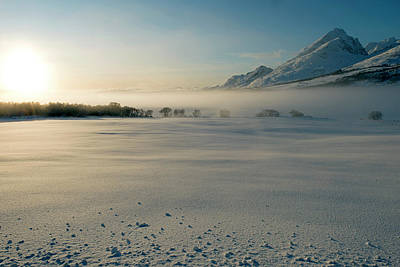 Photograph - Fog In Lofoten 5 by Dubi Roman