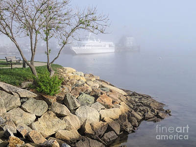 Photograph - Fog In May by Janice Drew
