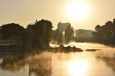 Photograph - Fog In Park by Marek Stepan