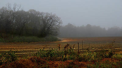 Fog In The Field Art Print by Laura Ragland