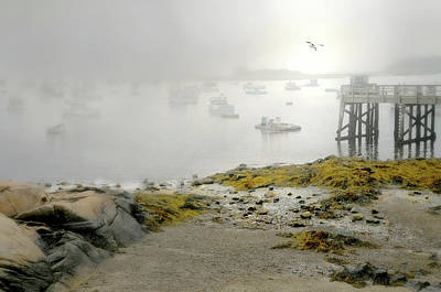 Photograph - Fog In The Morn by Diana Angstadt