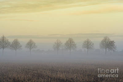 Photograph -  Fog In The Morning by Giovanni Malfitano