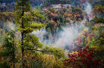 Photograph - Fog In The Valley by Diana Boyd