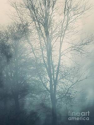 Photograph - Fog by Maria Urso
