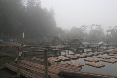 Photograph - fog by Masami Iida