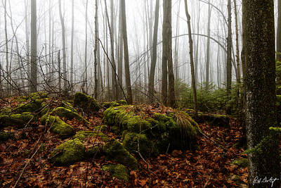 Fog Moving In Original by Phill Doherty