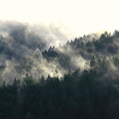 Photograph - Fog Moving Through The Hills by Katie Wing Vigil