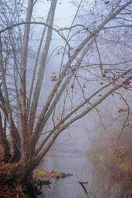 Fog On Buffalo Creek 1 Art Print